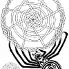 Celtic Knotwork Spider