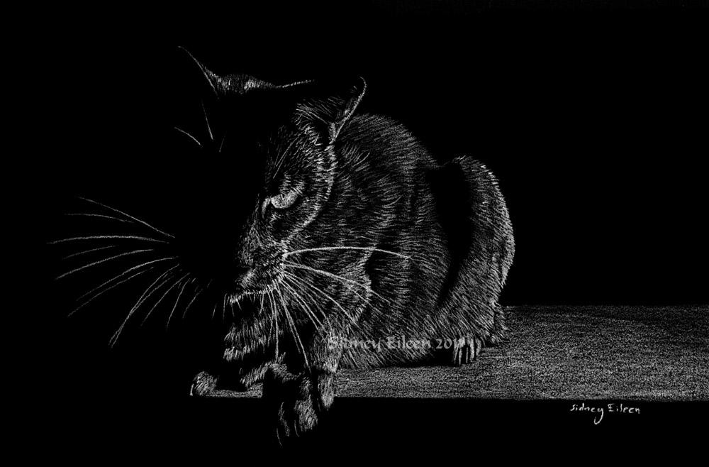 Realistic animal art portfolio by sidney eileen