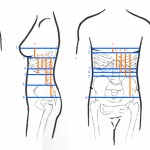 Rewritten - Measuring for a Corset